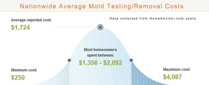 Photos Of Mold Remediation Average Cost