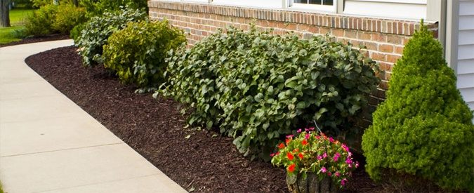 Mulched Flower Beds